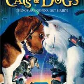 Cats & Dogs is listed (or ranked) 7 on the list The Best Cat Movies for Kids