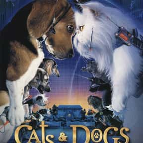 Cats & Dogs is listed (or ranked) 15 on the list The Best Cat Movies