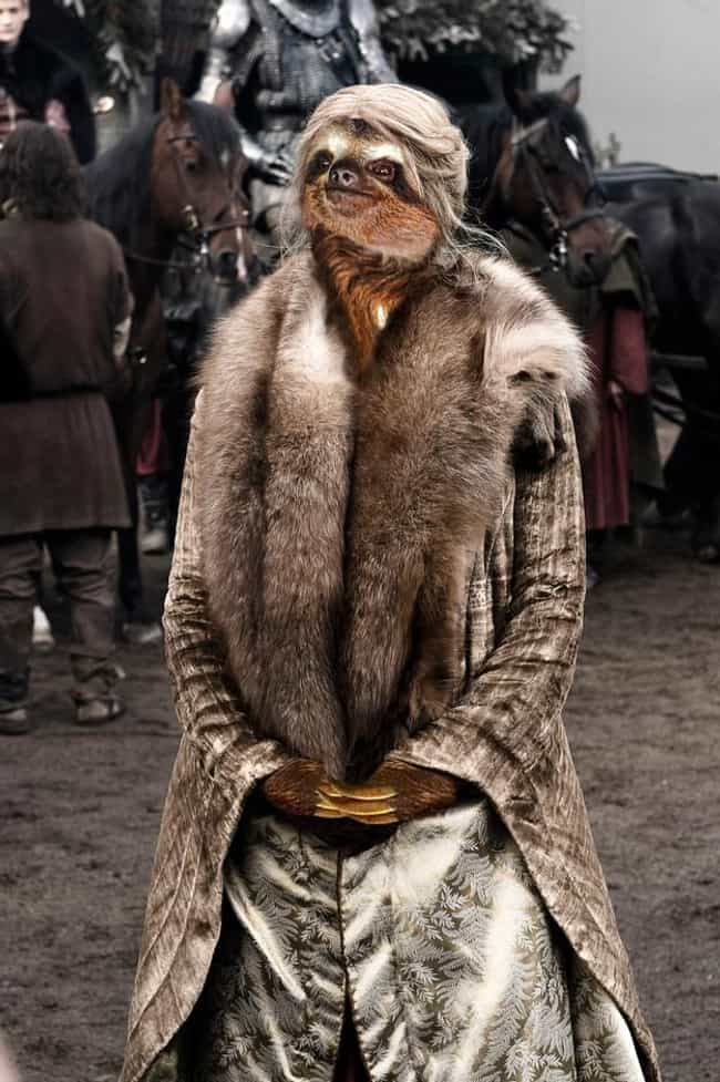 Cersei Lannister is listed (or ranked) 10 on the list 13 Game of Thrones Characters as Sloths