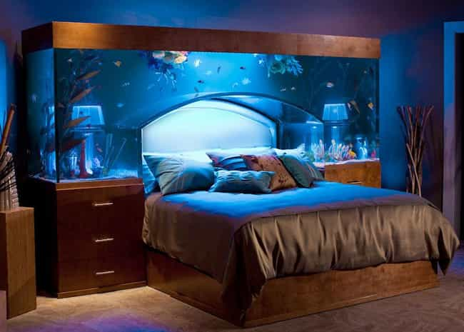 Chad Ochocinco is listed (or ranked) 4 on the list 15 Celebrities with Incredible Fish Tanks