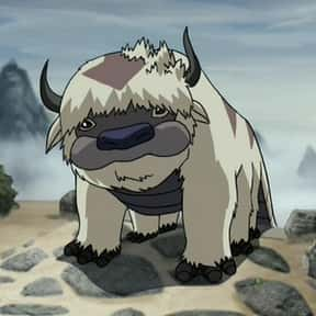 Appa is listed (or ranked) 13 on the list The Best Animal Characters in Anime