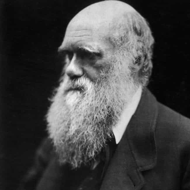 Charles Darwin is listed (or ranked) 2 on the list 12 Historical Figures Whose Deaths Were Outrageously Exaggerated
