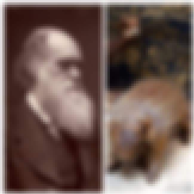Charles Darwin is listed (or ranked) 1 on the list The Favorite Foods Of 15 Historical Figures