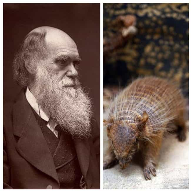 Charles Darwin is listed (or ranked) 2 on the list The Favorite Foods Of 15 Historical Figures