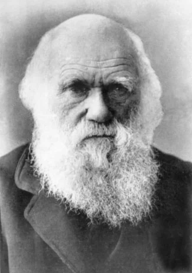Charles Darwin is listed (or ranked) 6 on the list Famous People with Tinnitus