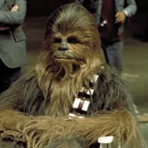 Chewbacca is listed (or ranked) 2 on the list The Most Memorable Film Sidekicks Ever