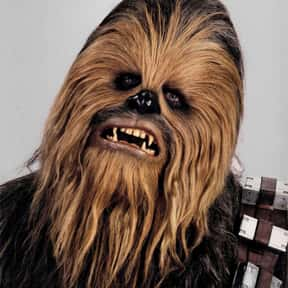 Chewbacca is listed (or ranked) 12 on the list Which Star Wars Characters Deserve Spinoff Movies?
