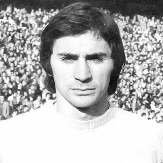 Miguel Ángel González Suárez is listed (or ranked) 2 on the list The Best Real Madrid Goalkeepers Of All-Time