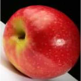 Apples with skin