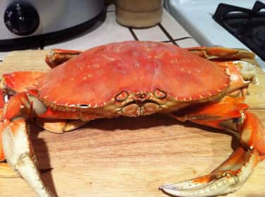Dungeness Crab is listed (or ranked) 2 on the list The Best Kinds of Crab to Eat