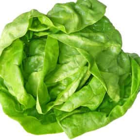 Boston Lettuce is listed (or ranked) 25 on the list All Low Carbohydrate Foods