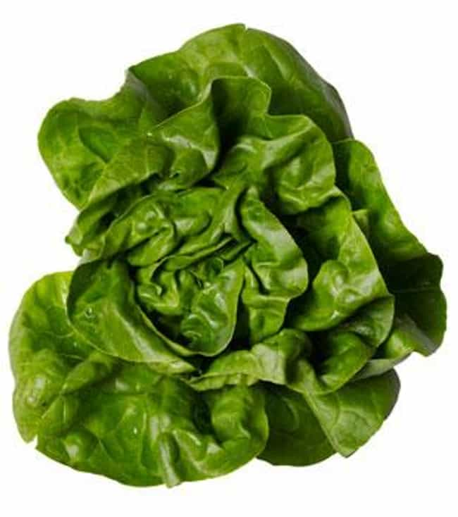Boston Lettuce is listed (or ranked) 3 on the list 21 Types of Lettuce, Ranked Best to Worst