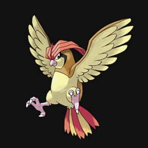Pidgeotto is listed (or ranked) 18 on the list The Best Normal Pokemon of All Time