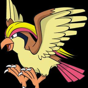 Pidgeot is listed (or ranked) 23 on the list The Greatest Bird Characters of All Time