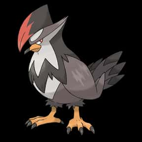 Staraptor is listed (or ranked) 10 on the list The Best Normal Pokemon of All Time