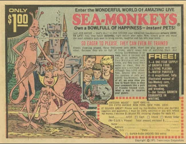 Sea Monkeys is listed (or ranked) 2 on the list The Best Vintage Ads in Comic Books