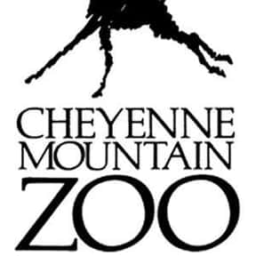 Cheyenne Mountain Zoo is listed (or ranked) 7 on the list The Best Zoos in the United States