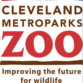 Cleveland Metroparks Zoo is listed (or ranked) 11 on the list The Best Zoos in the United States