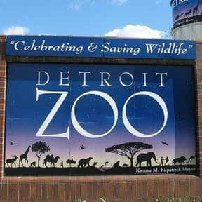 Detroit Zoo is listed (or ranked) 9 on the list The Best Zoos in the United States