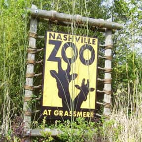 Nashville Zoo is listed (or ranked) 16 on the list The Best Zoos in the United States