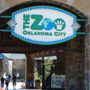 Oklahoma City Zoo and Botanica is listed (or ranked) 25 on the list The Best Zoos in the United States
