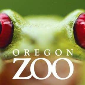 Oregon Zoo is listed (or ranked) 24 on the list The Best Zoos in the United States