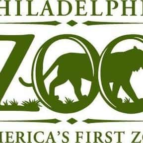 Philadelphia Zoo is listed (or ranked) 22 on the list The Best Zoos in the United States