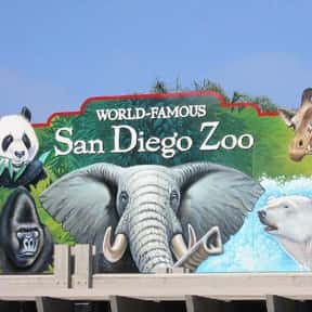 San Diego Zoo is listed (or ranked) 6 on the list The Best Zoos in the United States