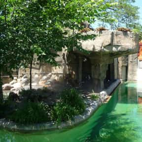 Toledo Zoo is listed (or ranked) 2 on the list The Best Zoos in the United States