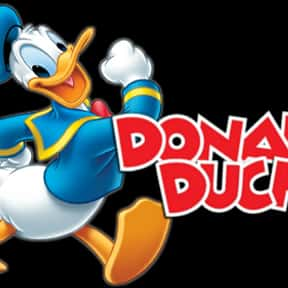 Donald Duck: Disney Animated S is listed (or ranked) 6 on the list The Best Bird Cartoons