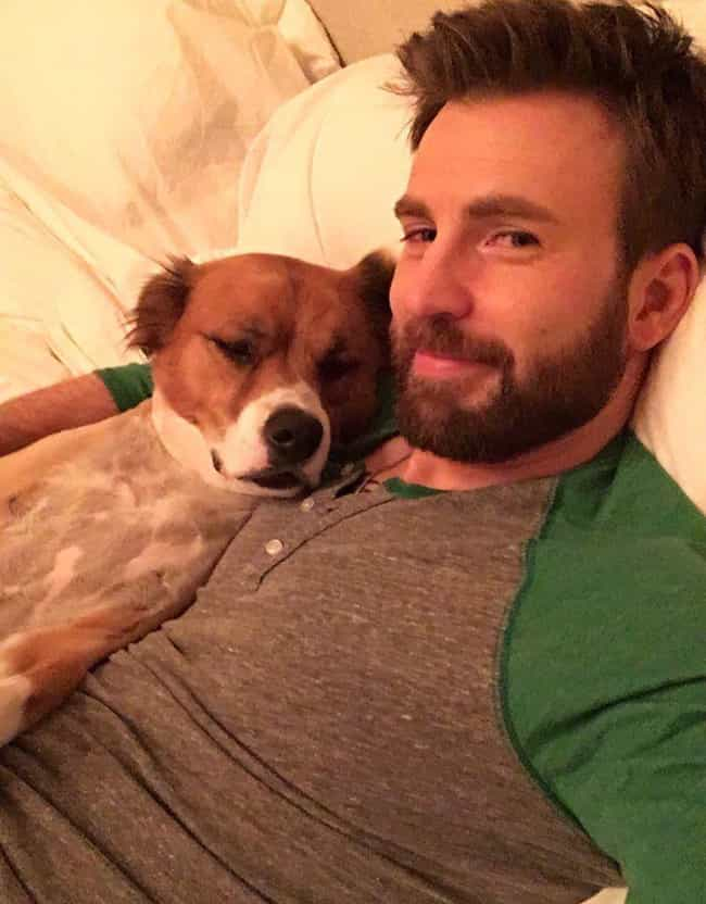 Chris Evans is listed (or ranked) 1 on the list Buff Celebrity Men And The Little Dogs That Love Them