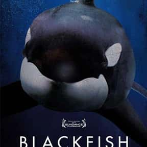 Blackfish is listed (or ranked) 2 on the list Life-Changing Documentaries You've Got to See