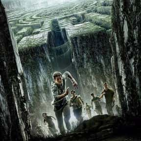 The Maze Runner is listed (or ranked) 15 on the list The Best Film Adaptations of Young Adult Novels