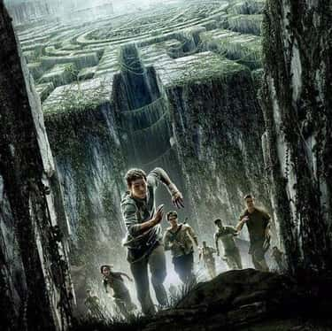 The Maze Runner is listed (or ranked) 1 on the list What To Watch If You Love 'Divergent'