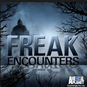 Freak Encounters  is listed (or ranked) 6 on the list The Best Cryptozoology TV Shows