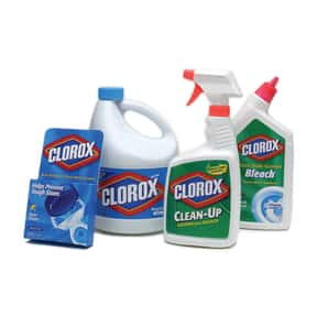 Clorox is listed (or ranked) 2 on the list The Best Detergent Brands