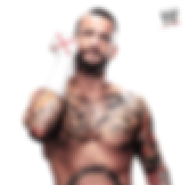 CM Punk is listed (or ranked) 3 on the list The Hottest Wrestlers of All Time