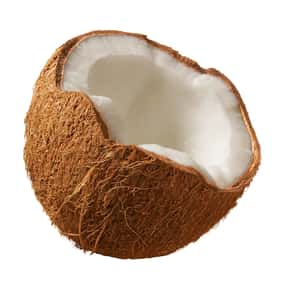 Coconut is listed (or ranked) 19 on the list The Best Sherbet Flavors