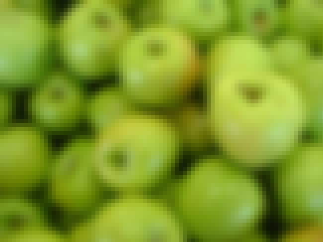 Granny Smith Apple is listed (or ranked) 4 on the list The Best Foods High in Antioxidants