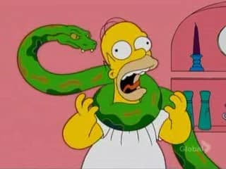 Strangles on Random Best Simpsons Non-Human Characters