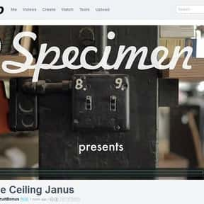 specimenproducts.com is listed (or ranked) 2 on the list Musical Instrument Websites
