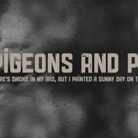pigeonsandplanes.com
