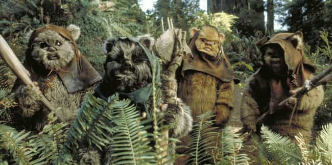 Ewoks is listed (or ranked) 2 on the list The Most Inconceivably Adorable Creatures To Come Out Of The Star Wars Universe