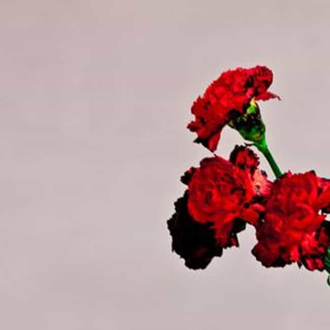 Love In The Future is listed (or ranked) 4 on the list The Best John Legend Albums of All Time