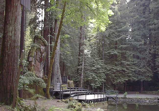 Bohemian Grove is listed (or ranked) 7 on the list 19 Organizations (Allegedly) Connected to the Illuminati