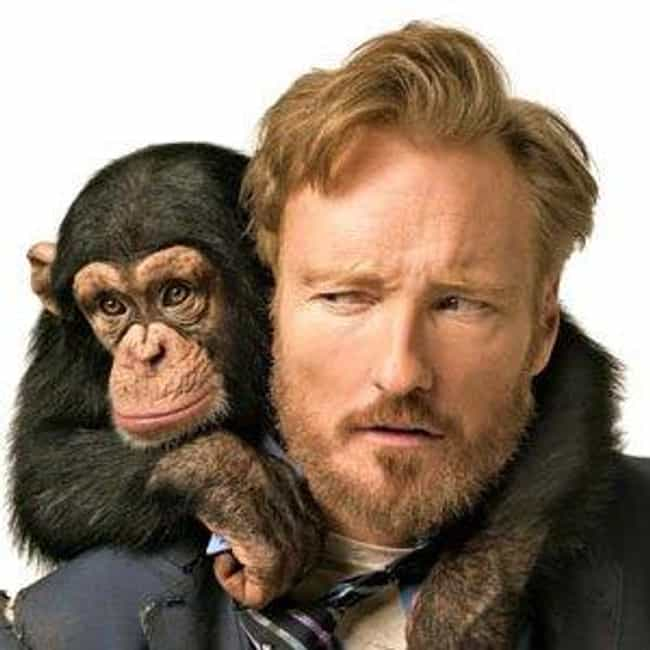 Conan O'Brien is listed (or ranked) 3 on the list The Top 10 Funniest Bearded Comedians