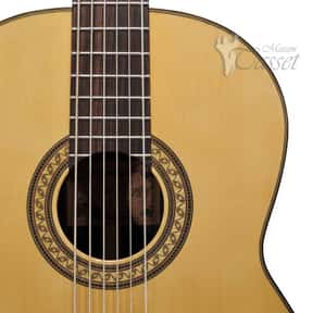 Contrabass guitar is listed (or ranked) 22 on the list Plucked String Instrument - Instruments in This Family