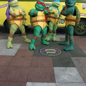 Teenage Mutant Ninja Turtles is listed (or ranked) 10 on the list The Best Superhero Teams & Groups