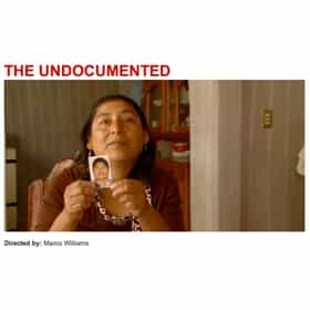 The Undocumented