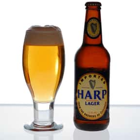 Harp Lager is listed (or ranked) 22 on the list The Best Beers to Chug
